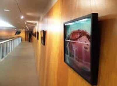 Gallery exhibition in Colyer-Fergusson
