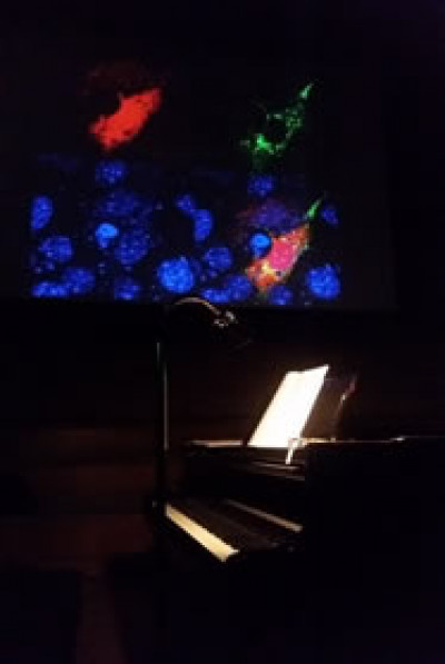 Grand piano and projections ready in the concert-hall