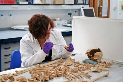 Female academic examines bones from a skeleton in the lab