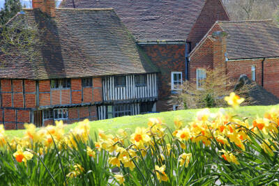 Beverley Farm in the spring