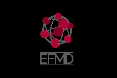 The Management Development Network