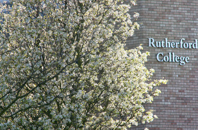 Exterior of Rutherford College with blossoming tree in the foreground